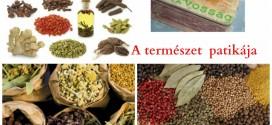 a_termeszet_patikaja