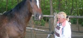 bottyan_equus_hungaria120508_001_15