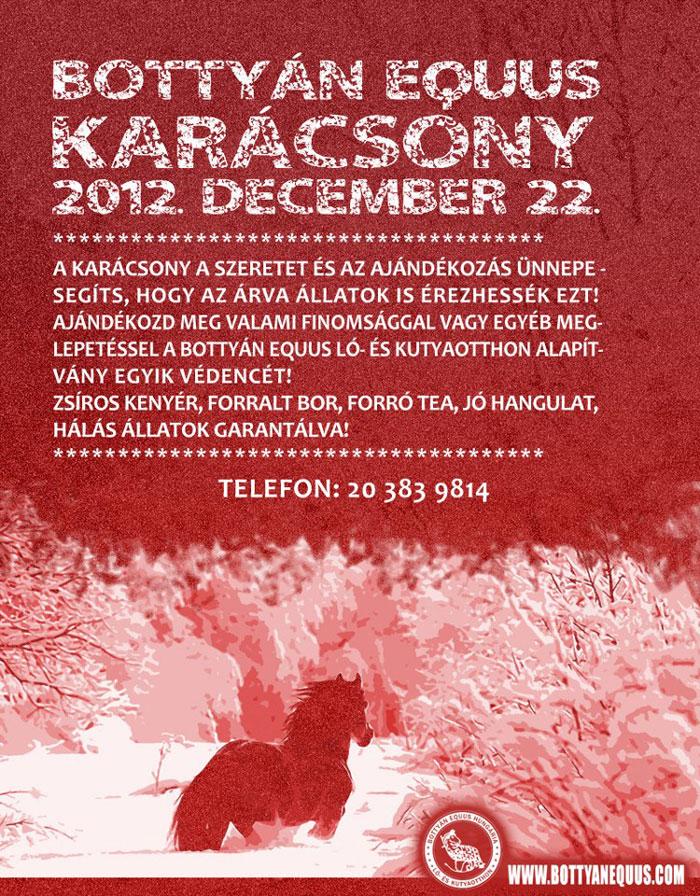 bottyan_equus_karacsony_2012