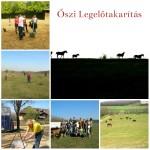 oszi_legelotakaritas