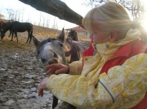 bottyan_equus_120123_033