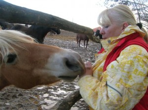 bottyan_equus_120123_035
