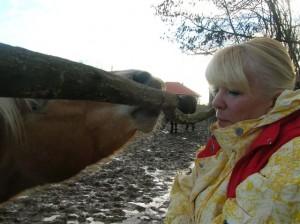 bottyan_equus_120123_036