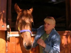 hatvani_kobzott_lovak01